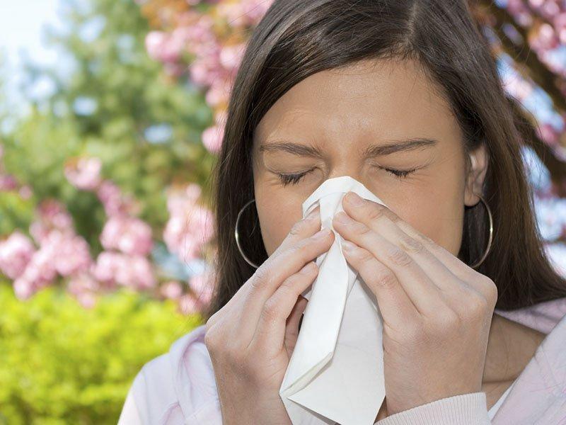alerg chniy nezhit yogo l kuvannya narodnimi zasobami 24 - Алергічний нежить і його лікування народними засобами