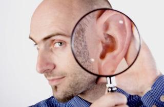 Анатомія і будова вуха людини – як воно влаштовано 2019