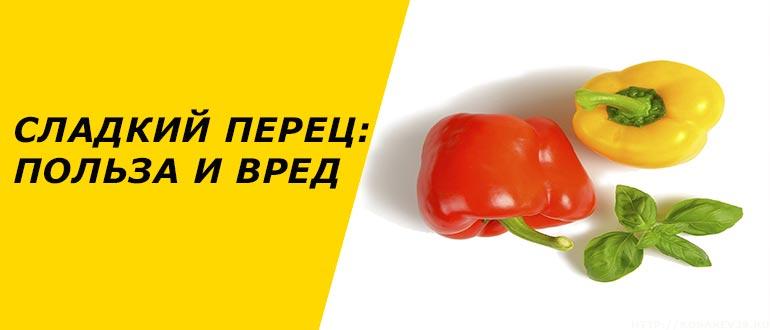 Болгарський перець користь і шкода для здоров'я солодкого овоча