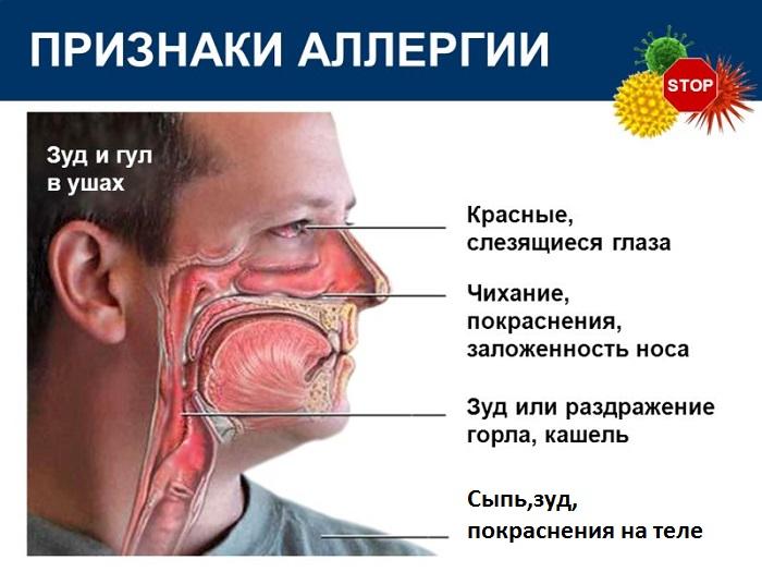Чому з носа тече кров і паморочиться голова