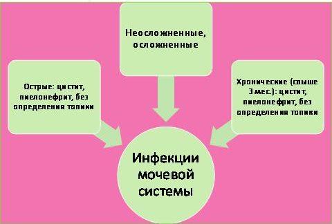 chomu z yavlya t sya zelena secha 1 - Чому з'являється зелена сеча