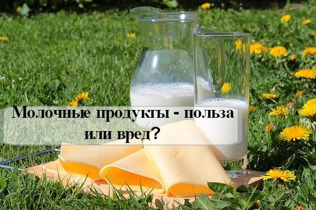Кисломолочні продукти – корисні властивості та можливу шкоду