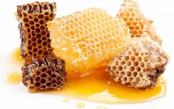 Користь та протипоказання застосування калини з медом