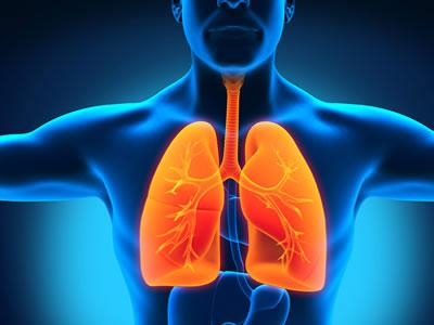 Лікування запалення легенів народними засобами