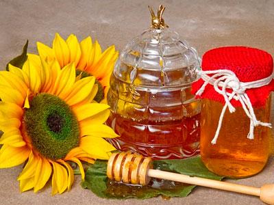 Натуральний лікувальний продукт з меду соняшнику корисні властивості і протипоказання нектару