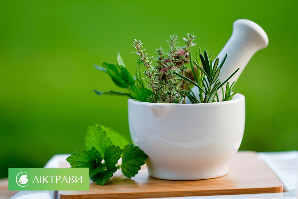 Олія герані лікування гаймориту – Хвороби носа