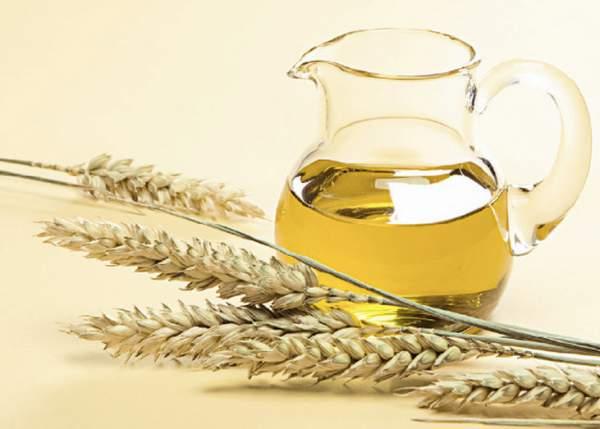 Олія зародків пшениці властивості і застосування в косметології