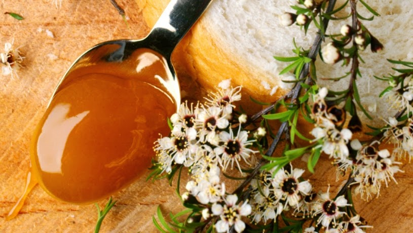 osoblivost medu z manuki 1 - Особливості меду із мануки