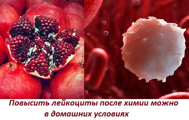 Підвищити лейкоцити швидко народні засоби