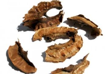 Перегородки волоських горіхів корисні лікувальні властивості настоянка застосування