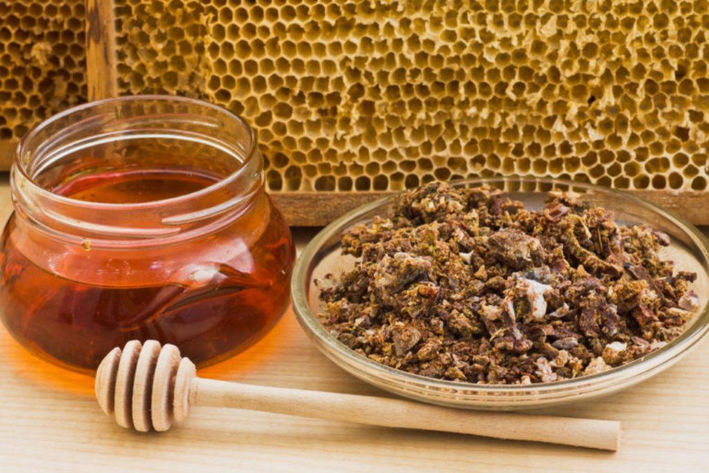 Приготування прополісного меду