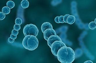 Що робити при фолікулярній ангіні у дітей причини симптоми і лікування