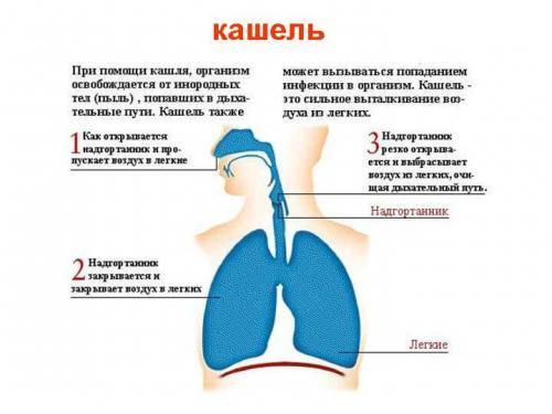 Що робити якщо важко дихати при кашлі