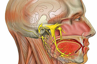 simptomi ta l kuvannya nevritu sluhovogo nerva 1 - Симптоми та лікування невриту слухового нерва