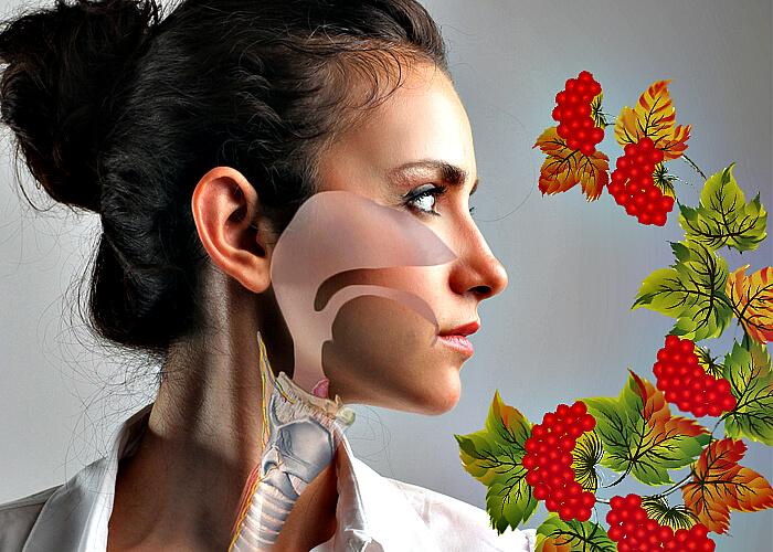 simptomi trahe tu efektivn metodi l kuvannya hvorobi 1 - Симптоми трахеїту і ефективні методи лікування хвороби