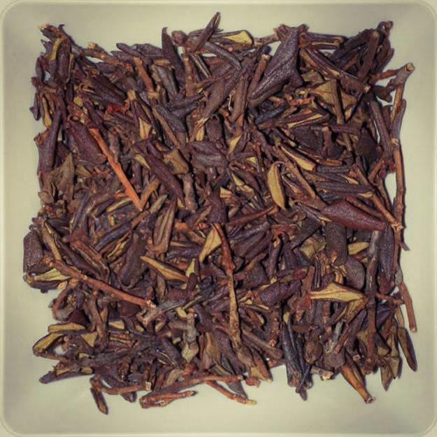 Трава саган-дайля: корисні властивості і протипоказання