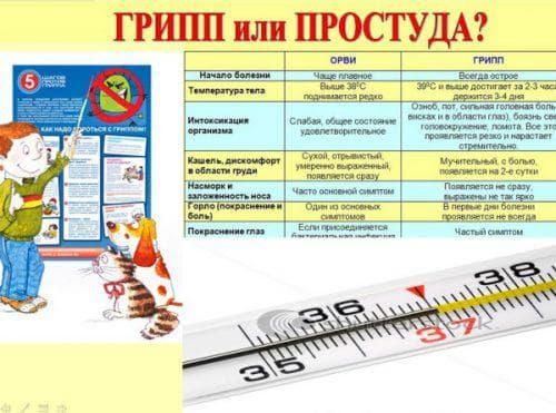 v dm nnost gripu v d grv 1 - Відмінності грипу від ГРВІ