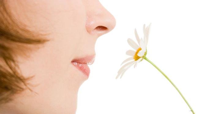 Як повернути нюх і смак при нежиті швидко і безболісно