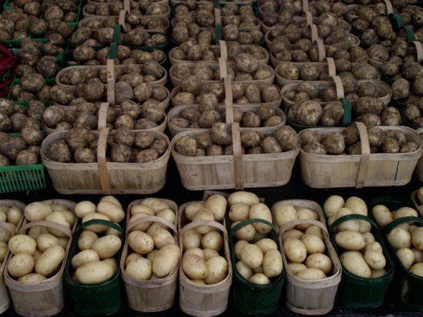 Як правильно дихати над картоплею? ? інгаляції як правильно дихати ? Захворювання