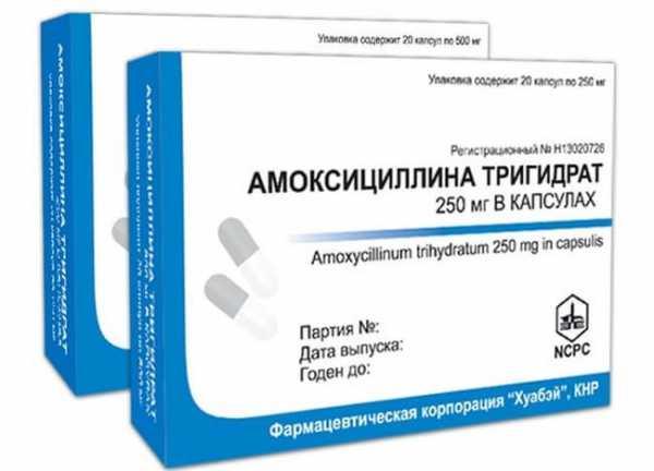 Як приймати амоксицилін при ангіні середні дозування препарату
