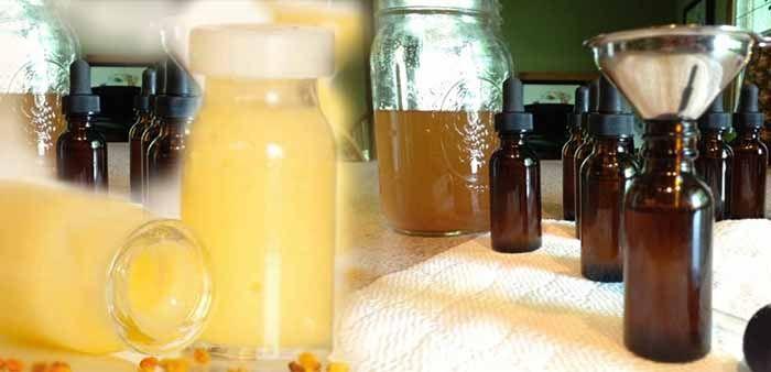Як приймати маточне молочко Маточне молочко бджолине