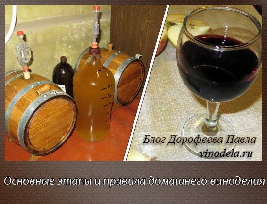 yak shvidko prigotuvati vino v domashn h umovah 1 - Як швидко приготувати вино в домашніх умовах