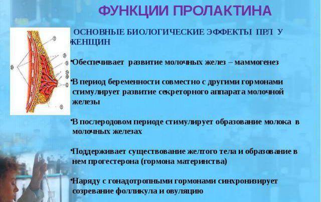 yak zniziti prolaktin u zh nok narodnimi zasobami 1 - Як знизити пролактин у жінок народними засобами