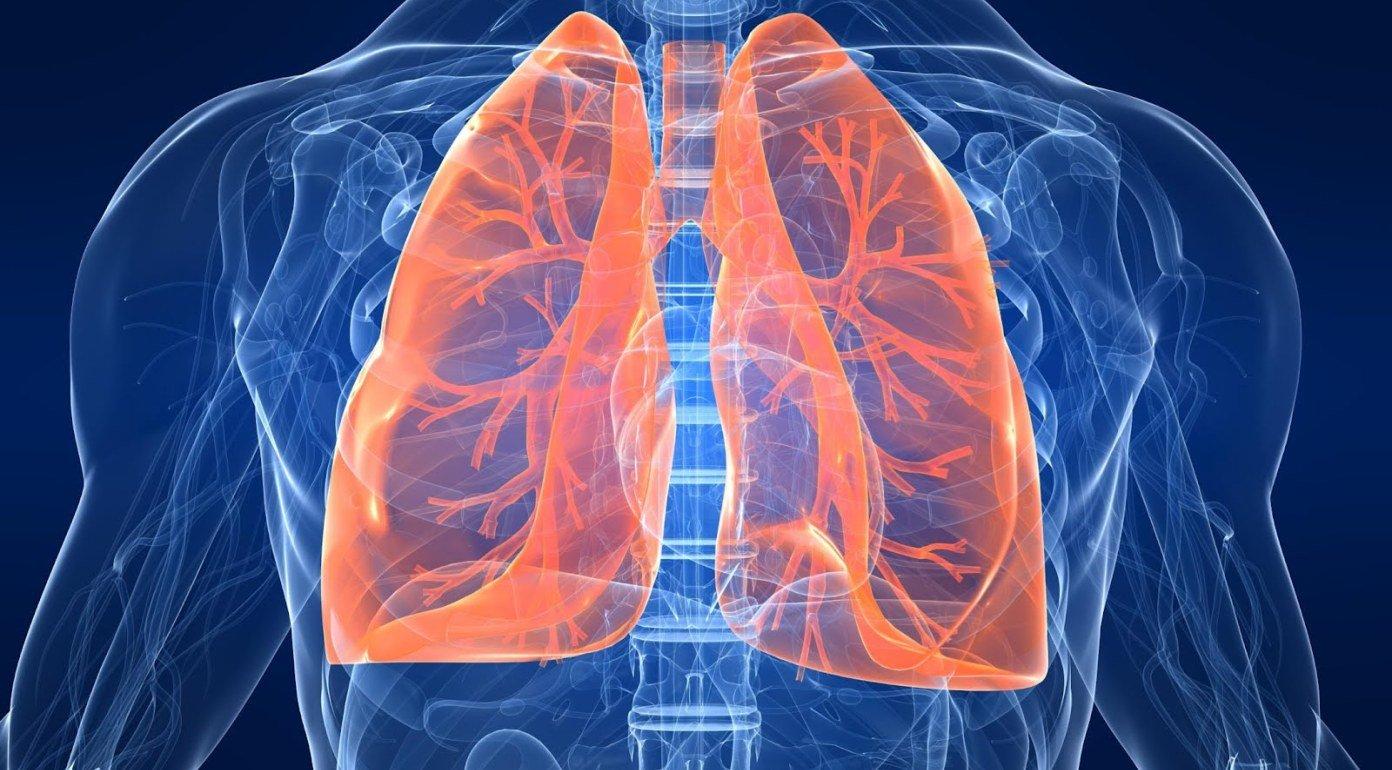 yaka temperatura pri pnevmon u doroslih 1 - Яка температура при пневмонії у дорослих