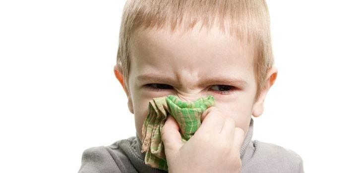 Зелені соплі у дитини лікування народними засобами