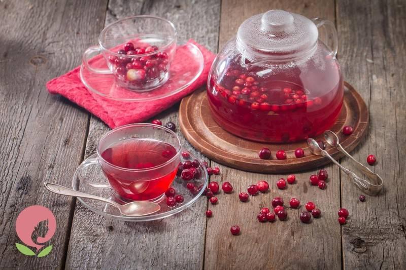 Журавлина при застуді: користь ягід в лікуванні і профілактиці захворювань