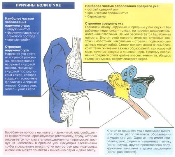 Зовнішній отит (отит зовнішнього вуха) у дорослого – причини, симптоми і лікування зовнішнього отиту