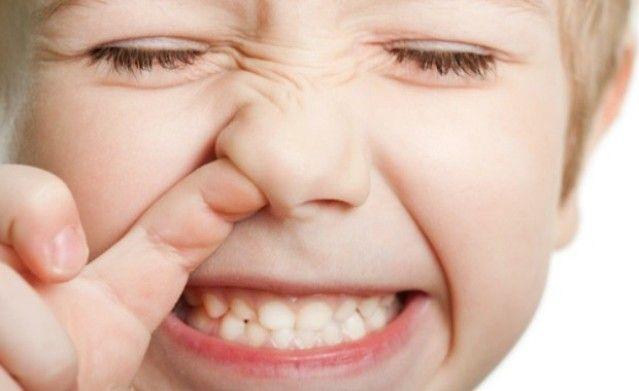 Звідки беруться комашки в носі? Звідки беруться комашки в носі і як з ними боротися.